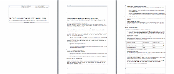 Professional report writing services templates